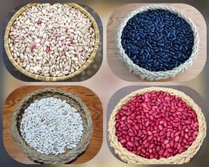 언니네텃밭, 토종작물 생산 및 판매 확대 착수